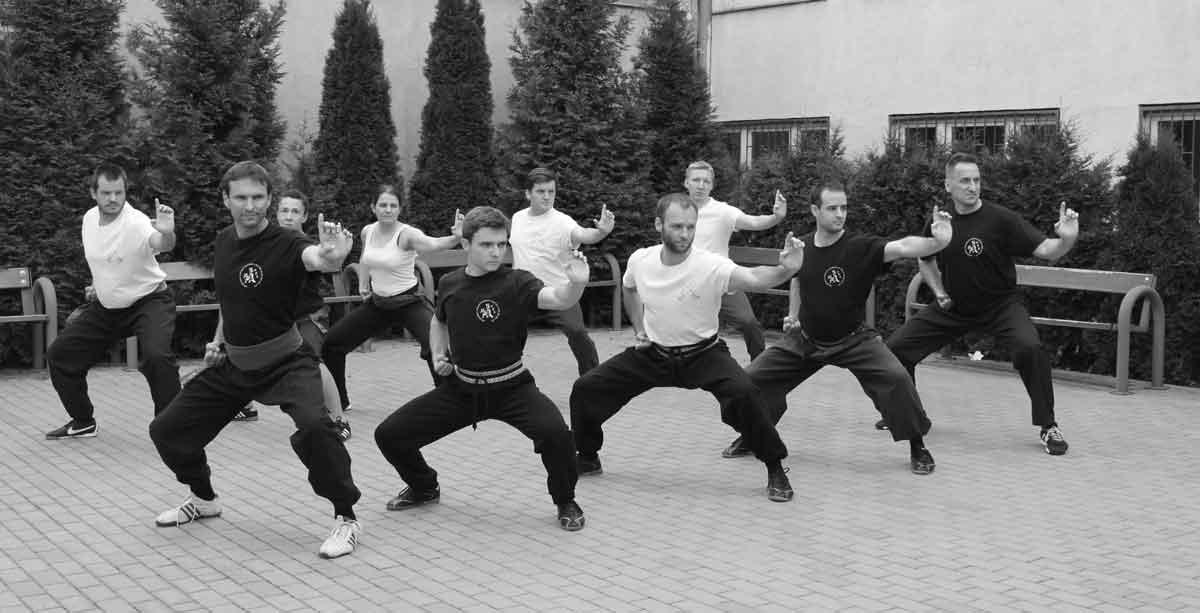 Treningi Hung Gar Kung Fu